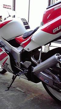 P1001246